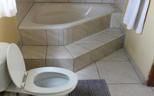 executive room with bath